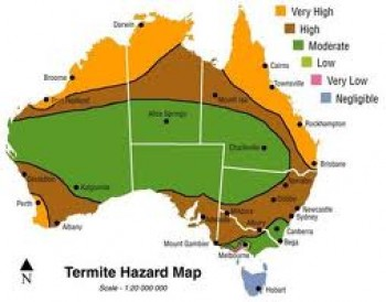 Termites ELIMCO The PEST ELIMINATORS - Us termite map